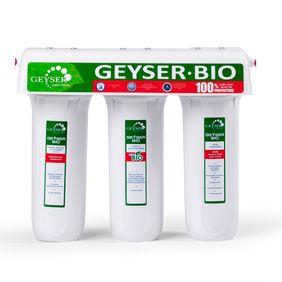 Filter Geyser 3 Bio 341  18050 Filteri za domaćinstvo